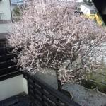 3月最終日!!